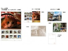 """動物写真家・岩合光昭氏の""""郵便局でしか手に入らない""""切手セット・グッズはねこの魅力がいっぱいニャ♡"""