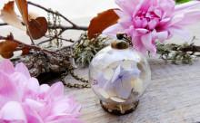 これは素敵!花の美しさがそのまま閉じ込められたテラリウム風アクセサリー