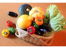 農業女子プロジェクトのイベント!サカタのタネとリーガロイヤルホテル東京がタイアップ「ハッピーベジタブル料理教室」開催