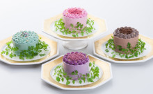 ついに全国発送スタート!ケーキみたいなベジデコサラダで誕生日をお祝いしてみる?