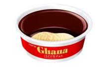 絶対美味しい♡ガーナチョコとガーナアイスの生チョコタイプが登場