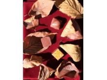 フランス人間国宝がつくる秋のショコラはいかが?
