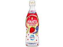 季節の果実を組み合わせた『カルピス』新味・いちご発売!
