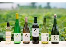ぶどう踏み体験も!日本ワインを楽しむフェスティバル
