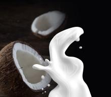 美肌に効く『ココナッツミルクヨーグルト』って?