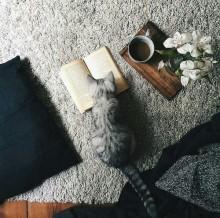 読書の秋♡ ショップ店員がおすすめの「読んで女を磨ける」本って!?