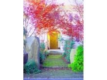 理想の庭づくりも、ふるさと納税でかなえる時代!?