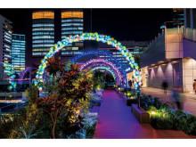 新宿で音楽イベント開催!音楽とイルミの饗宴を楽しもう
