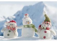 雪と触れあうお正月!都心から近い雪遊びスポット3選