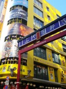 【渋谷のワンコンランチ】選べる500円メニューが嬉しい百軒店のアットホームな人気店