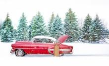 冬のドライブデートで、好きな人と距離を縮める4つのポイント