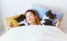 SNSで大人気「ギズモさん」が登場!ニャンコと添い寝気分が楽しめる枕カバーがキュート♡