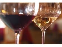 ワインと食を堪能する一夜限りのスペシャルイベント
