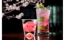 夜桜見物の後はピンクのカクテルで乾杯♡ザ・キャピトルホテル東急で「SAKURAカクテルフェア」開催