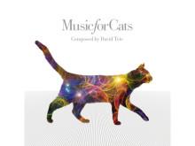 """愛猫に聞かせたい!ねこのための音楽が""""猫の日""""に発売"""