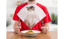 ボクも食べたいニャ♪にゃんこと一緒にディナーができる「猫ナプキン」がたまらない♡