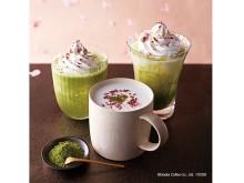 抹茶の渋み&桜花の塩味が大人向け!春らしいショコララテ