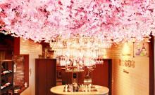 一足お先にお花見気分!満開の桜の下で飲み放題が楽しめるワインバルはいかが?
