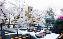 特等席は早い者勝ち!ミッドタウンのお花見は、桜に手が届きそうなレストランでランチ&ディナーが気分♡