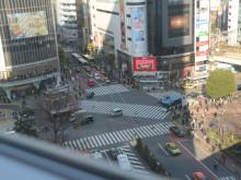 東京がクールになった。ちょっと視点を変えてみるだけで