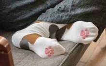ぷにぷに肉球が気持ちいい!春夏を快適にすごせる「猫足ソックス」がフェリシモ猫部から登場