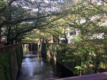 初夏は新緑の目黒川をお散歩。15分で気持ち高ぶる