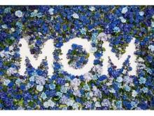夫から妻へ!スワロフスキーが提案する「ママの日」