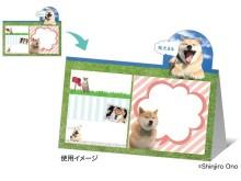 """""""柴犬まる""""に癒される!郵便局限定グッズで毎日ハッピー"""