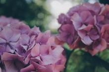 パステルカラーの『紫』を取り入れて大人っぽい抜け感を