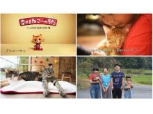 猫の幸せを考えるWEB動画「幸せまねこ~ムービー」公開