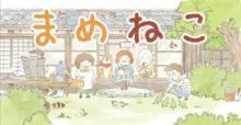 猫と飼い主の日常をコミカルに描いた漫画『まめねこ』2018年1月よりTVアニメ放送開始