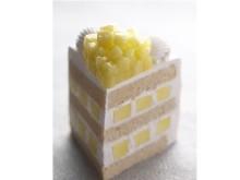 ほぼメロン?! 静岡県産マスクメロン1/3個を使用した極上ケーキ