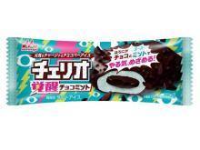 夏にぴったり!おすすめチョコミントアイス3選
