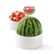 かわいすぎるスイカの夏デザート♡韓国でも話題になった「まるまるスイカソルビン」が日本初登場!