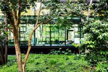 """ホテルで過ごす優雅な朝から良い1日を始めよう♡アマン東京で平日限定の""""朝食""""がまもなくスタート!"""