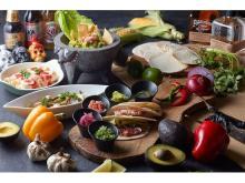 メキシコ料理を生演奏のラテン音楽とともに楽しむビュッフェ