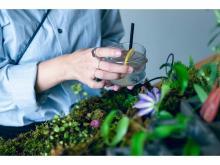 東京茶寮が植物園に!? オリジナル煎茶モクテルを楽しむ2日間