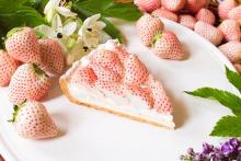白イチゴ「初恋の香り」を使用した、毎年人気の贅沢タルト♡グランメゾン銀座&青山の2店舗で先行販売