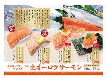 とろける口どけ!かっぱ寿司に「生オーロラサーモン」が登場