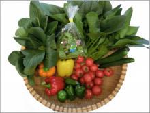 水素水で栽培した国産高機能性野菜「還元野菜」を限定販売