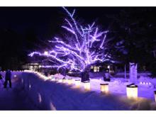 雪燈籠を市民が手作り!「第43回弘前城雪燈籠まつり」開催