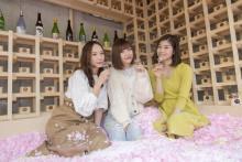 桜の花びらプール×佐賀の名産品♩インドアお花見が楽しめるバーが表参道に10日間限定でOPEN♡
