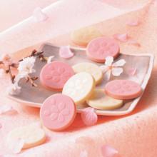 春を先取りする桜満開チョコレート♡ロイズに桜が香る春スイーツが数量限定でお目見え♩
