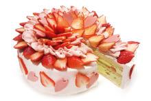 """一足早く春を感じて♡カフェコムサに""""桜""""をイメージした限定ショートケーキが2月22日の1日限定でお目見え"""