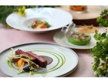 瀬戸内の食材を五感で堪能!極上の空間で最高のディナーを