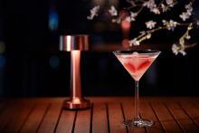 甘酸っぱい柑橘香る爽やかなケーキセットも♡ハイアット セントリック 銀座 東京の「NAMIKI667」の春メニュー
