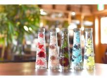 箱根の貸切温泉宿で人気の「ハーバリウム」作りを無料体験!