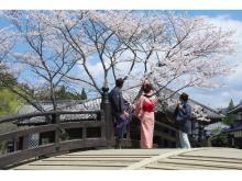 江戸人になりきって古の花見を堪能!「日光江戸村」の花見宴