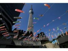 東京スカイツリータウンに1500匹のこいのぼりが泳ぐ!