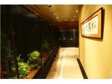 銀座でホタルを鑑賞!約600匹の「源氏ボタル観賞会」開催